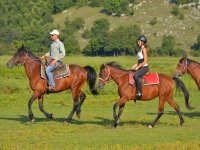 Gallop ride