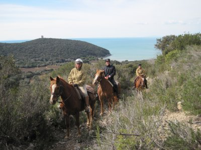 Settimana di equitazione nel Parco della Maremma