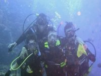 Diving Group