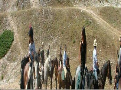 BellaVista Country House Passeggiate a Cavallo