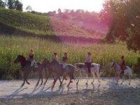 Gruppo di partecipanti che passeggiano a cavallo
