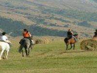 Trekking tra i campi