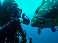 underwater contacts