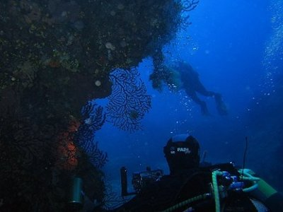 A.S.D. Project Diver