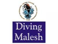 Diving  Malesh