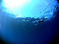 Immersi nel blu