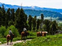 trekking equestre