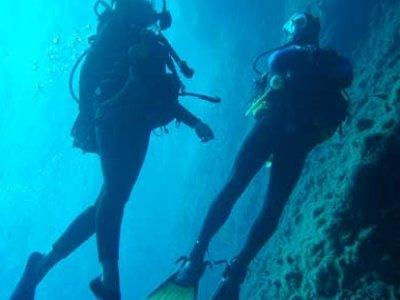 Lupi di Mare Divers