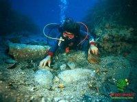 Diving on Pantelleria