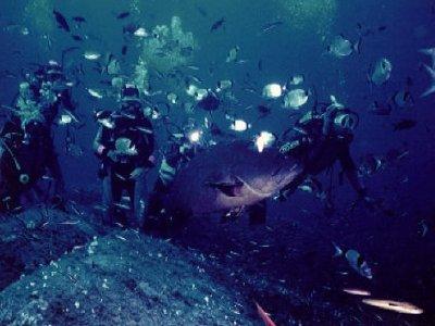 Aqua Diving Centers