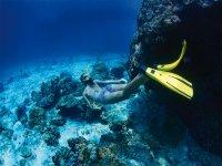escursioni sottomarine