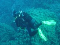 In the Seabed