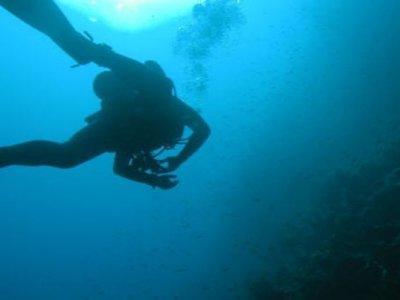Athos Diving