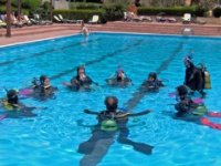 Open Course - confined water training