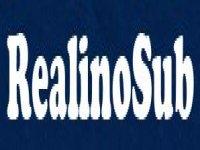RealinoSub