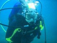 Diver esperto
