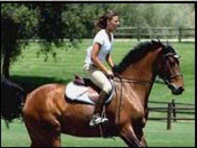 Fruitcake Passeggiate a Cavallo