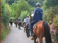 La passeggiata a cavallo tra i boschi
