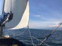 a vela nel mare della Sicilia