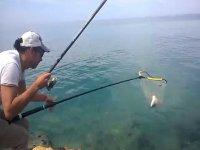 le diverse tecniche di pesce