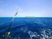 pesca in mare aperto