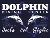 Dolphin Giglio