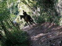 Passeggiata nel verde di Avigliana