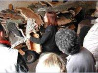 Arts and Crafts in Gallura