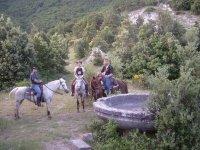 Gite A Cavallo Con La Famiglia E Gli Amici
