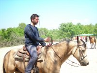 Impara Ad Andare A Cavallo Con Noi