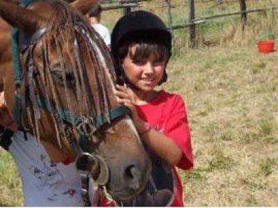 Le Lupinaie Passeggiate a Cavallo