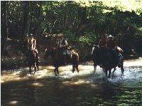 Un Guado a Cavallo