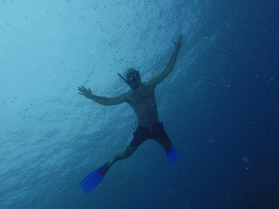 Portofino Dive