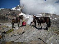 Trekking a cavallo sul Monte Rosa