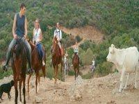 Scoprire la Sardegna a cavallo