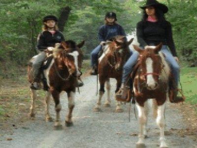 Bosquey Ranch