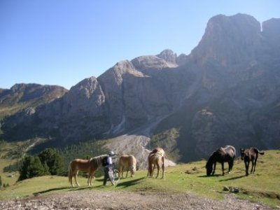 Tatanka Ranch