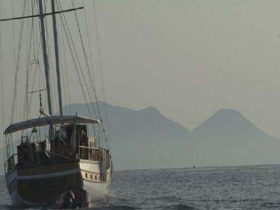 Sailingreen