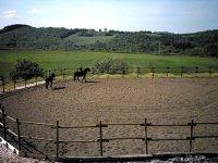 Il Centro di Equitazione