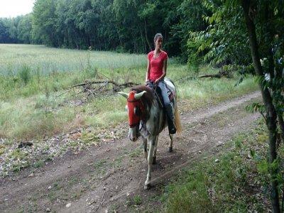 Un'ora a cavallo vicino Milano