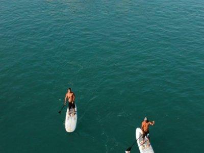 Surfconcept Paddle Surf