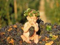 Un Pò d`Uva