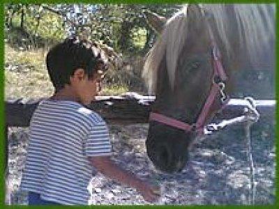 75esima Avventura Passeggiate a Cavallo