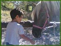 Bambino che avvicina un cavallo