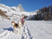 Divertimento sulle Alpi