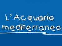 Acquario Mediterraneo dell'Argentario