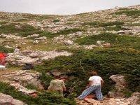 La vallecola in cui si apre l'ingresso della grotta dell'Ortara