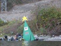 Albero di Natale Subacqueo 2008