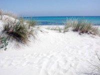 Scprendo nuove spiagge