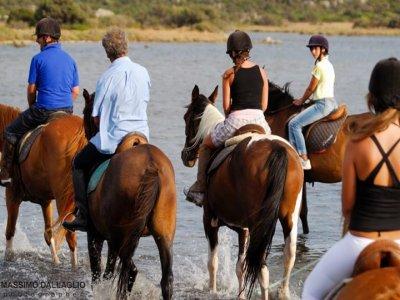 Sea Bounty Tourist Service Passeggiate a Cavallo